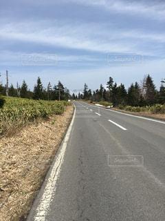 それのどちら側でも木と空の道の写真・画像素材[816311]