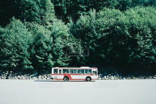 バスの写真・画像素材[815430]