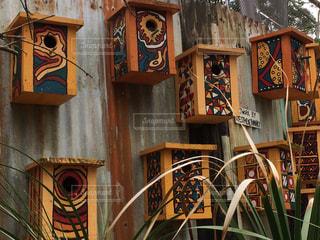 家を間違えない鳥小屋の写真・画像素材[876228]