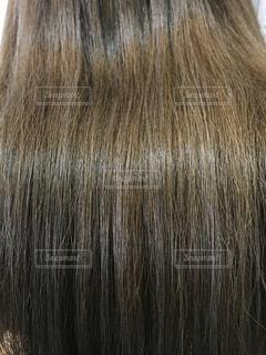 カラーヘアーの艶髪のアップ写真の写真・画像素材[908122]