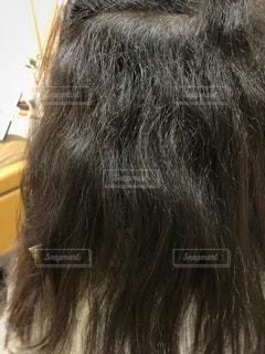 くせ毛とダメージで広がる髪の毛の写真・画像素材[1454275]