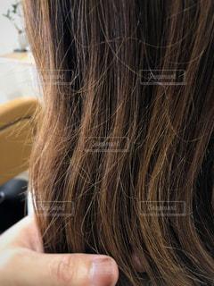 枝毛や切れ毛が気になる髪の写真の写真・画像素材[1454277]