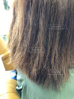 ダメージヘア 改善前の写真の写真・画像素材[1543575]
