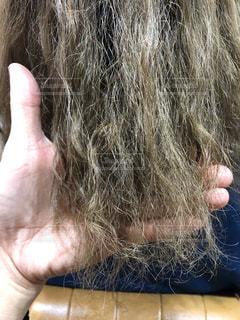 ダメージ毛のアップ写真の写真・画像素材[1581155]