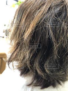 ダメージのある髪のアップ写真の写真・画像素材[2180860]