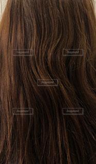 クセ毛のアップ写真です。の写真・画像素材[2186304]