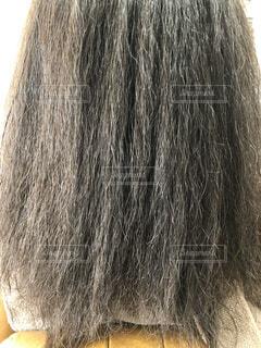くせ毛の強い広がる髪の写真の写真・画像素材[3173671]