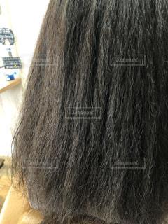 くせ毛の写真の写真・画像素材[3173670]