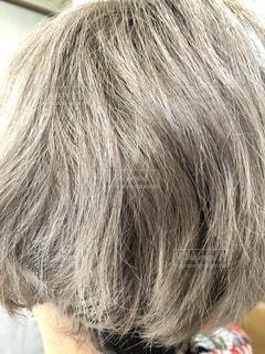 ブリーチを繰り返した髪の写真の写真・画像素材[3363619]