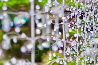 光を受けるガラスの写真・画像素材[817919]