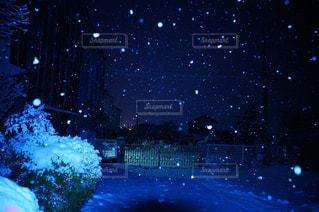 夜に降る雪の景色の写真・画像素材[821443]