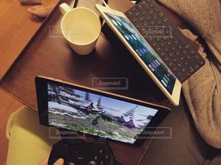 iPad Pro でゲームをするの写真・画像素材[821535]