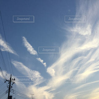空に大きな翼の写真・画像素材[817724]