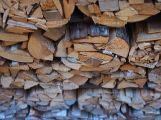 木の写真・画像素材[828619]