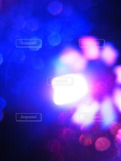 青の写真・画像素材[828625]