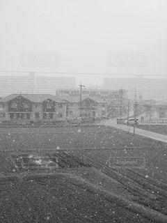 雪の写真・画像素材[829184]