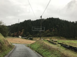 未舗装の道路側の木のパスの写真・画像素材[822479]