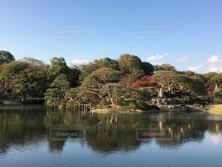 六義園の庭園の写真・画像素材[875586]