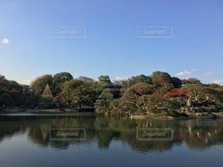 秋晴れの六義園の写真・画像素材[875587]