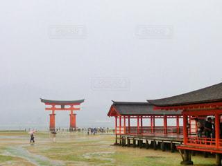 雨の厳島神社の写真・画像素材[875206]