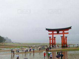 雨の厳島神社の写真・画像素材[875208]