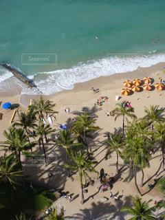 ワイキキビーチの写真・画像素材[876109]