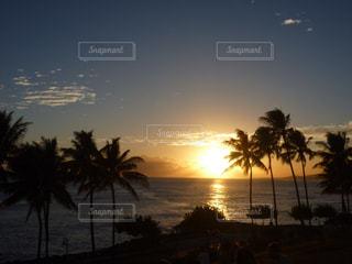 ハワイの夕陽の写真・画像素材[876124]