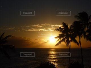 ハワイの夕陽の写真・画像素材[876126]