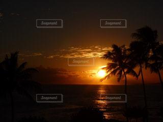 ハワイの夕陽の写真・画像素材[876129]