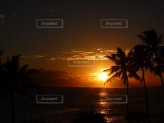 ハワイの夕焼けの写真・画像素材[876131]