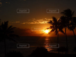 ハワイの夕焼けの写真・画像素材[876133]