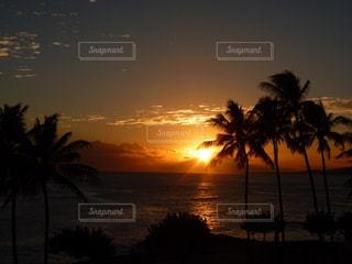 ハワイの夕焼けの写真・画像素材[876134]