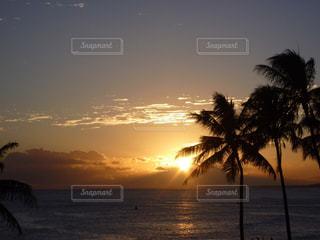 ハワイの夕焼けの写真・画像素材[876135]