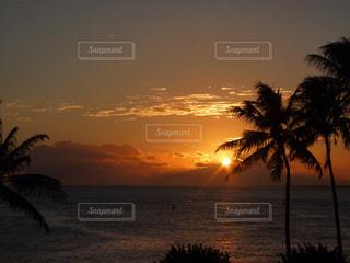 ハワイの夕焼けの写真・画像素材[876140]