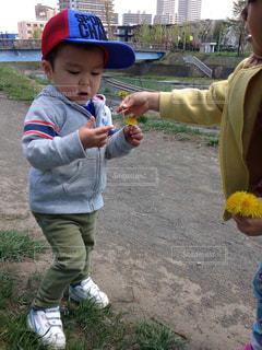 春のお散歩の写真・画像素材[819191]