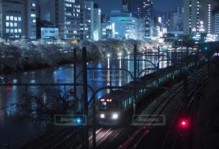 お堀の夜桜の写真・画像素材[922726]