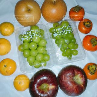 テーブルの上のオレンジのグループの写真・画像素材[819838]