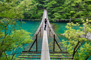 橋から撮影の写真・画像素材[821429]