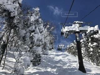 スキー場の写真・画像素材[1008835]