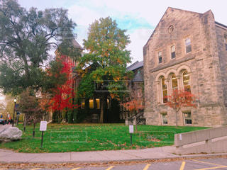 大きなレンガの草と木がある建物の写真・画像素材[847606]