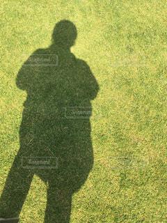 芝生と影の写真・画像素材[1055329]