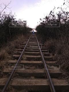 未舗装の道路を走行する列車 - No.821804