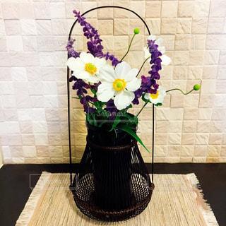 生け花の写真・画像素材[830512]