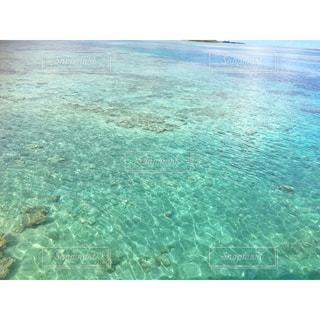 グアムの透き通った海の写真・画像素材[822180]