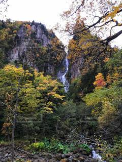 北海道の大自然の写真・画像素材[823754]