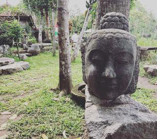 インドネシアの仏の頭の写真・画像素材[822307]