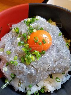 生しらす丼の写真・画像素材[829937]