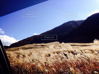 秋の景色の写真・画像素材[824781]