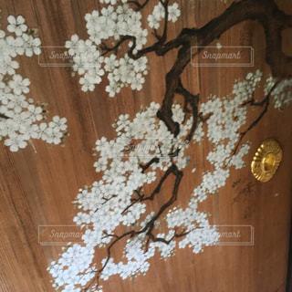 田母沢御用邸 桜絵、取っ手の写真・画像素材[1192555]