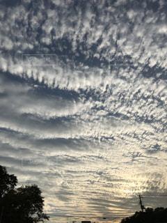 綿菓子雲の写真・画像素材[825330]